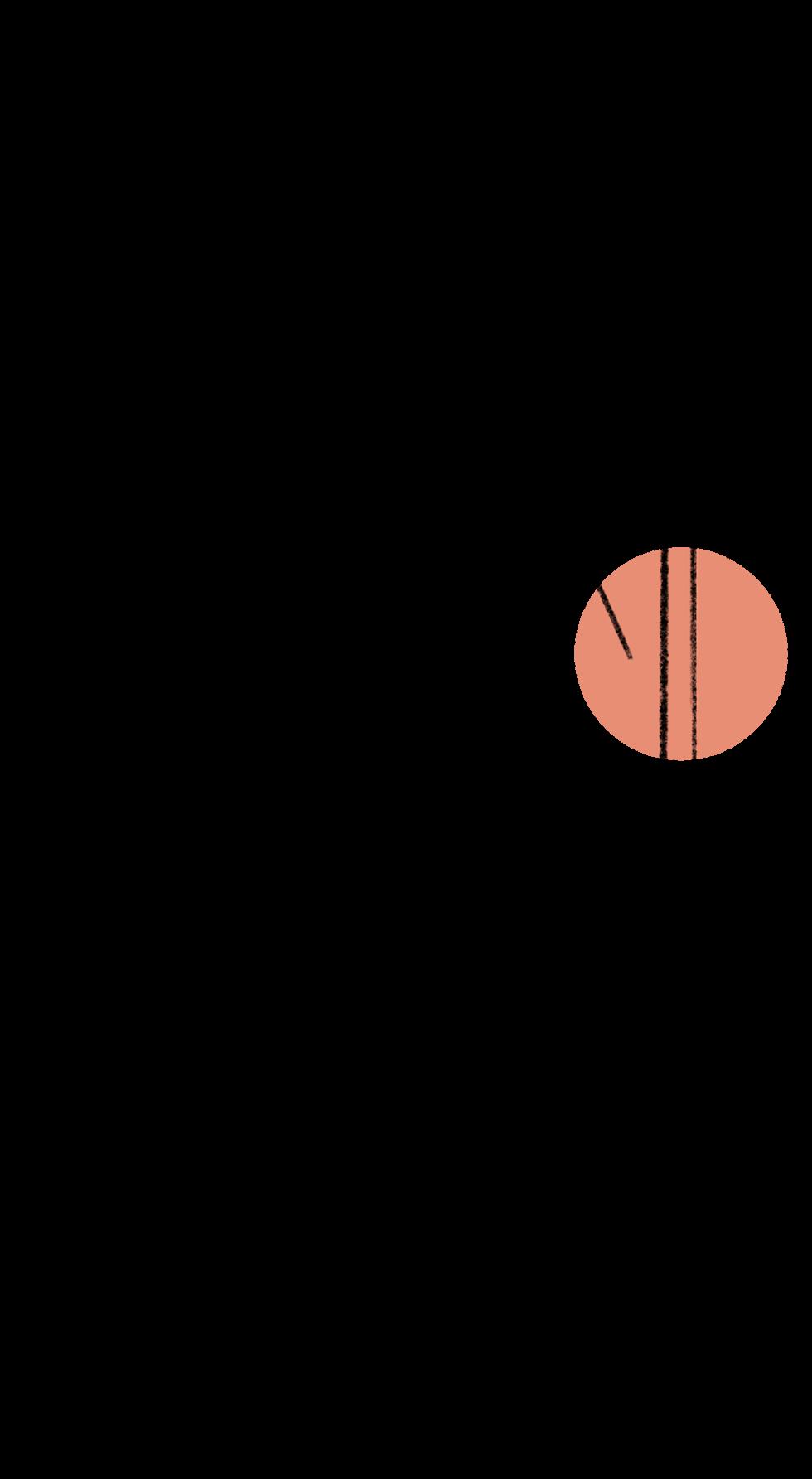 adopsi sethomevisit